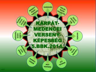 KÁRPÁT-MEDENCEI VERSENY-KÉPESSÉG 5.BBK.2014.