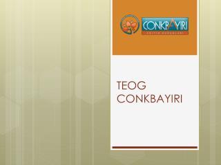 TEOG  CONKBAYIRI