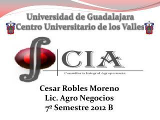 Cesar Robles Moreno Lic. Agro Negocios 7� Semestre 2012 B
