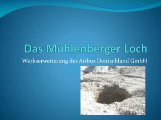 Das Mühlenberger Loch
