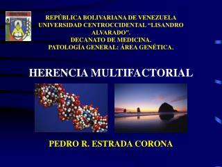 PEDRO R. ESTRADA CORONA