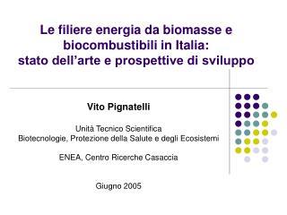 Vito Pignatelli Unità Tecnico Scientifica