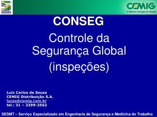 Luiz Carlos de Souza CEMIG Distribuição S.A.