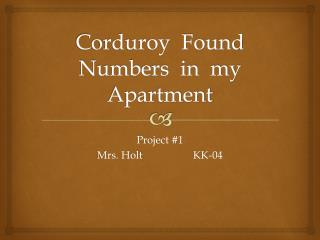 Corduroy  Found  Numbers  in  my  Apartment