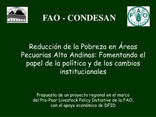 FAO - CONDESAN