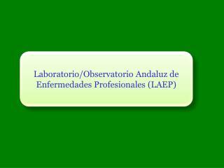 Laboratorio/Observatorio Andaluz de Enfermedades Profesionales (LAEP)