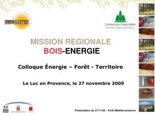 MISSION REGIONALE BOIS -ENERGIE