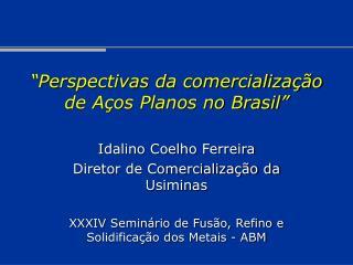 """""""Perspectivas da comercialização de Aços Planos no Brasil"""""""