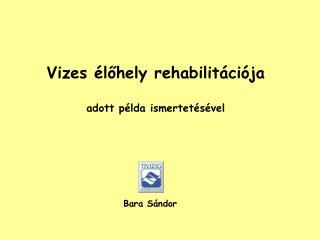 Vizes élőhely  rehabilitációja a dott példa ismertetésével