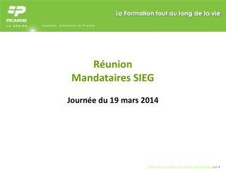Réunion  Mandataires SIEG Journée du 19 mars 2014