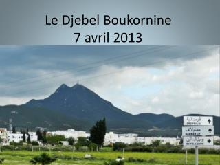 Le Djebel  Boukornine 7 avril 2013