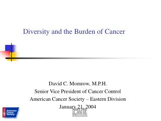 Diversity and the Burden of Cancer