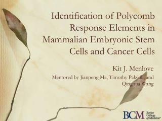 Identification of Polycomb Response Elements in Mammalian Embryonic Stem Cells and Cancer Cells