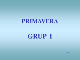 PRIMAVERA GRUP  I