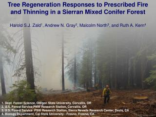 Tree Regeneration Responses to Prescribed Fire and Thinning in a Sierran Mixed Conifer Forest