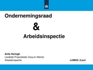 Ondernemingsraad & Arbeidsinspectie Anita Hertogh Landelijk Projectleider Zorg en Welzijn