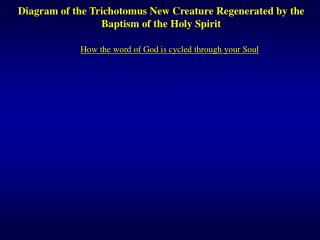 Diagram of the Trichotomus New Creature Regenerated by the Baptism of the Holy Spirit