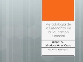 Metodolog�a de la Ense�anza en la Educaci�n Especial