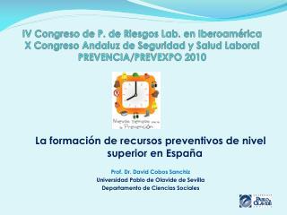 La formación de recursos preventivos de nivel superior en España Prof. Dr. David Cobos Sanchiz