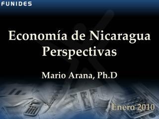 Economía de Nicaragua Perspectivas Mario Arana, Ph.D Enero 2010