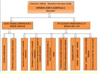 Anul şcolar  2014  - 2015