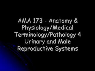 AMA 173 - Anatomy  Physiology