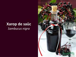 Xarop de saüc Sambucus nigra