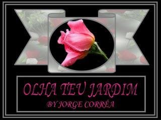 OLHA TEU JARDIM