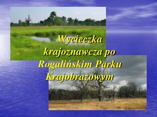Wycieczka krajoznawcza po Rogalińskim Parku Krajobrazowym