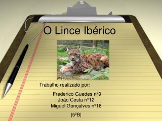 O Lince Ibérico