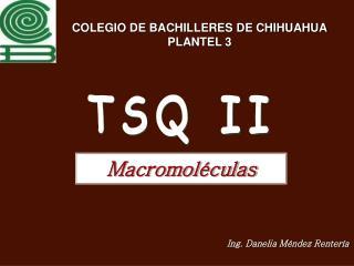 COLEGIO DE BACHILLERES DE CHIHUAHUA PLANTEL 3