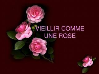 VIEILLIR COMME UNE ROSE