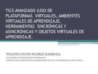 WILSON DAVID FLOREZ BARBOZA INGENIERO DE SISTEMAS E INFORMATICA