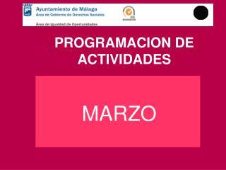 PROGRAMACION DE ACTIVIDADES