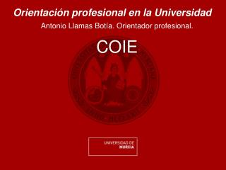 Orientación profesional en la Universidad Antonio Llamas Botía. Orientador profesional.  COIE