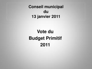 Conseil municipal du 13 janvier 2011