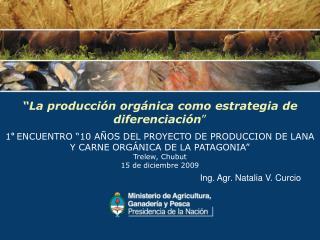 """""""La producción orgánica como estrategia de diferenciación """""""