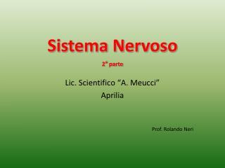 Sistema Nervoso 2° parte