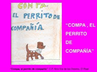 """""""COMPA , EL  PERRITO  DE COMPAÑÍA"""""""