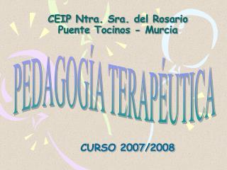 CEIP Ntra. Sra. del Rosario Puente Tocinos - Murcia