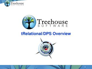 tRelational /DPS Overview