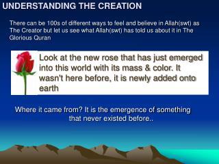 UNDERSTANDING THE CREATION