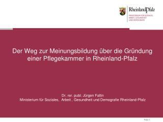 Der Weg  zur Meinungsbildung über die Gründung  einer Pflegekammer  in Rheinland-Pfalz