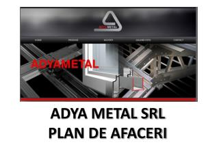 ADYA METAL SRL PLAN DE AFACERI