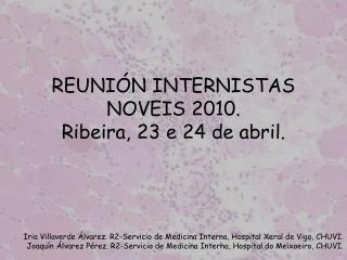 REUNIÓN INTERNISTAS NOVEIS 2010. Ribeira, 23 e 24 de abril.