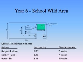 Year 6 - School Wild Area