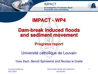 IMPACT - WP4 Dam-break induced floods and sediment movement Progress report