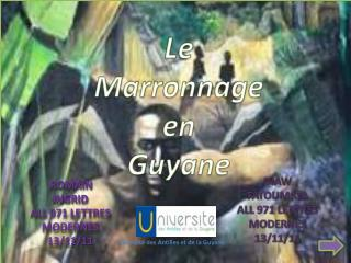 Le  Marronnage  en Guyane