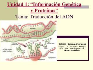 """Unidad 1: """"Información Genética y Proteínas"""" Tema: Traducción del ADN"""
