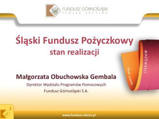 Śląski Fundusz Pożyczkowy  stan realizacji